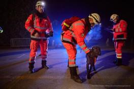 Trümmer Rettungshunde